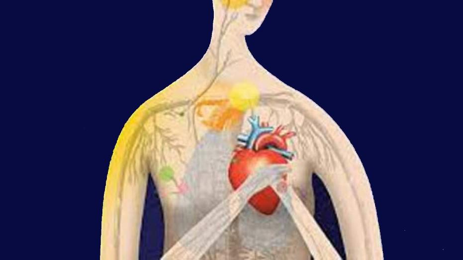 حمله قلبی یکی از اختلال های روان تنی خودشیفتگی است که کوهوت ان را توصیف کرده است.